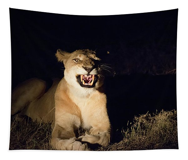 Nightmare Lioness Tapestry