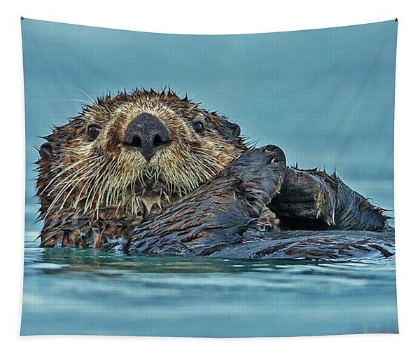 Northern Sea Otter In Alaska Tapestry