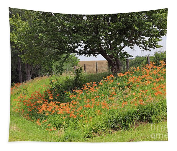 Orange Day Lilies Along A Country Road Tapestry