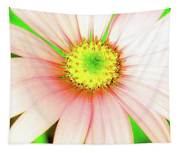 Pop Art Osteospermum 1 Tapestry