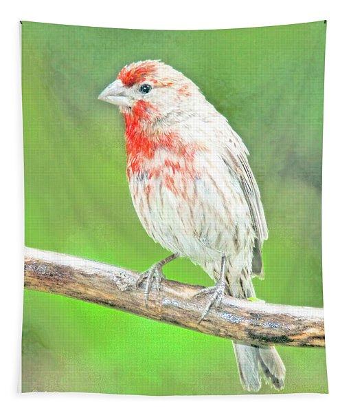 Purple Finch, Animal Portrait Tapestry