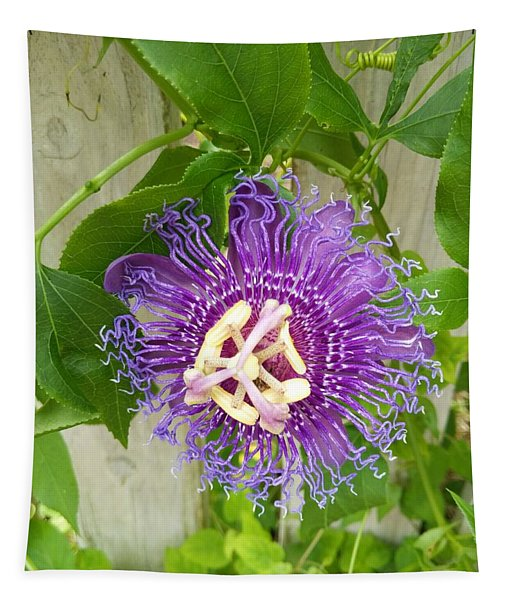 Purple Passionflower Tapestry