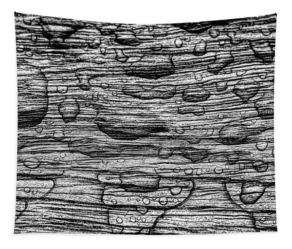 Raindrops On Wood, California, Usa Tapestry