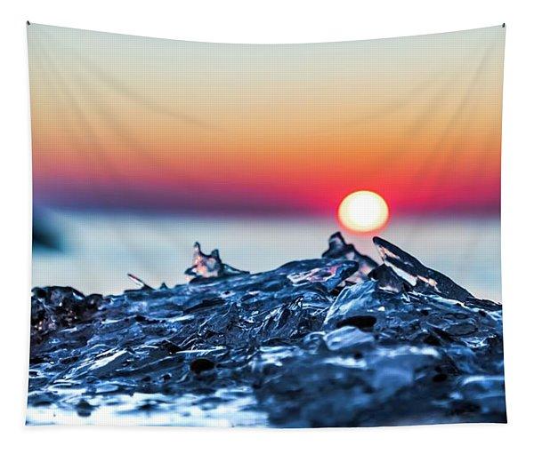 Regeneration Tapestry