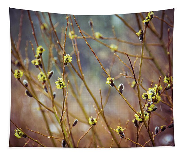 Snowfall On Budding Willows Tapestry