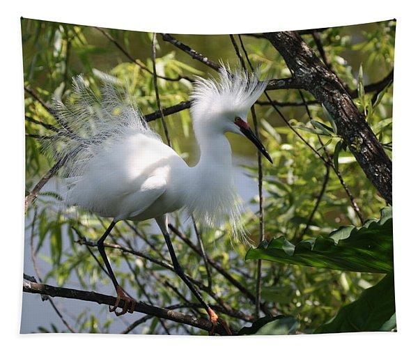 Snowy Egret 4031202 Tapestry