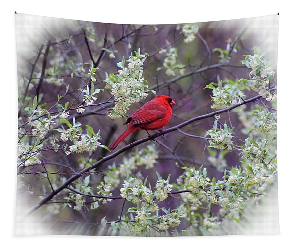 Spring Cardinal Square Tapestry