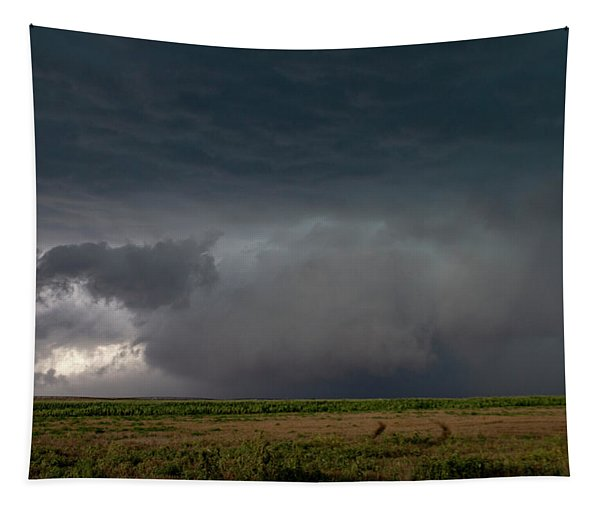 Tapestry featuring the photograph Storm Chasin In Nader Alley 030 by NebraskaSC