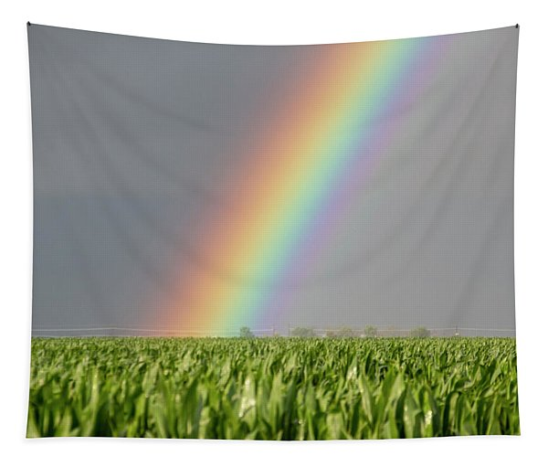 Tapestry featuring the photograph Storm Chasing After That Afternoon's Naders 023 by NebraskaSC
