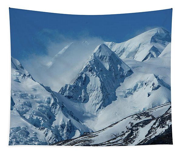Summer Winds In Mount Cook National Park Tapestry