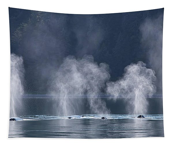 Synchronized Swimming Humpback Whales Alaska Tapestry