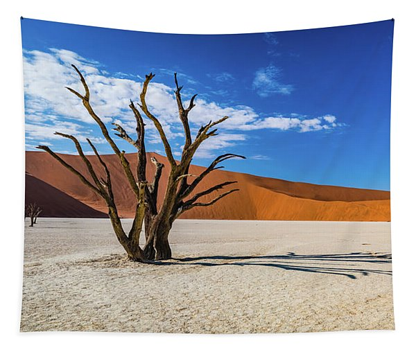 Tree And Shadow In Deadvlei, Namibia Tapestry