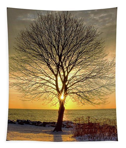 Tree Framed Sunrise New Hampshire Tapestry