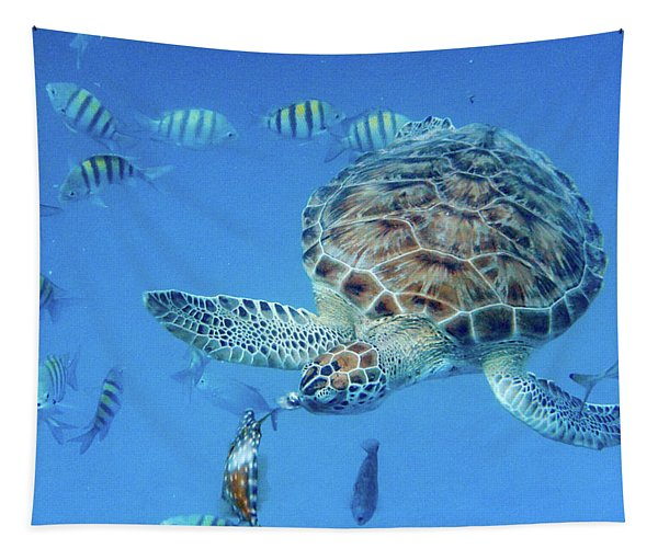 Turning Turtle Tapestry