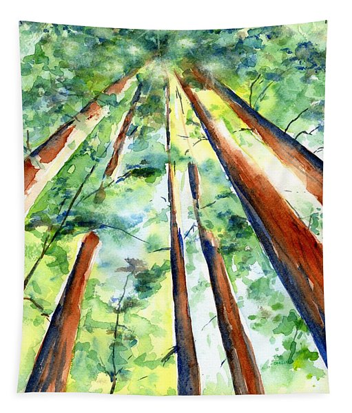 Up Through The Redwoods Tapestry