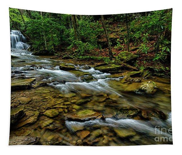Upper Falls In Spring Tapestry