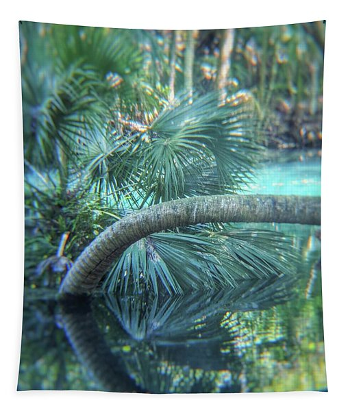 Witnessing Nature Tapestry