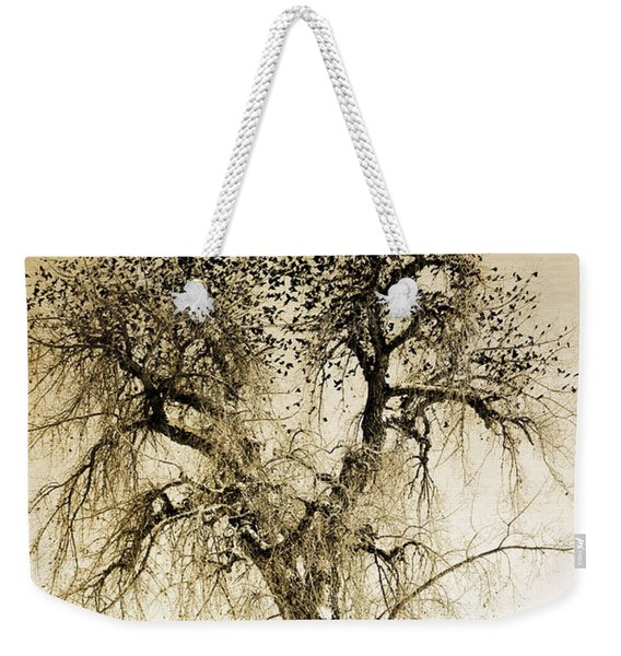 Bird Tree Fine Art  Mono Tone And Textured Weekender Tote Bag