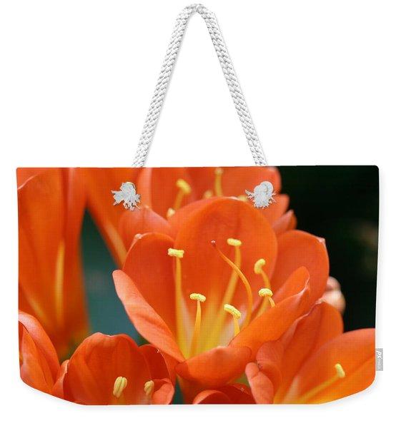 Clivia Weekender Tote Bag