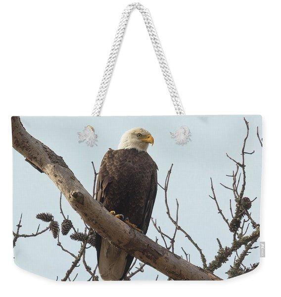Resting Bald Eagle Weekender Tote Bag
