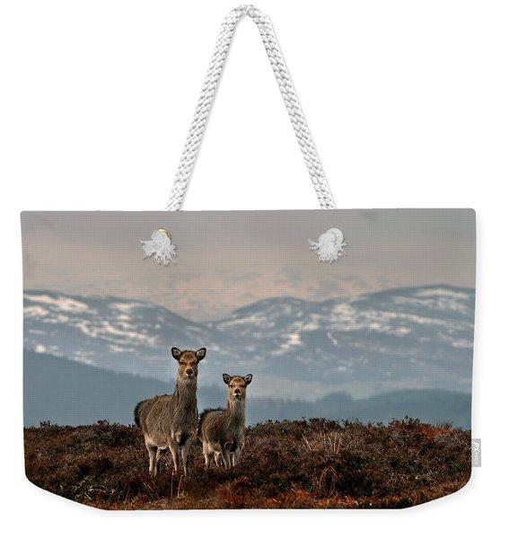 Sika Deer Weekender Tote Bag
