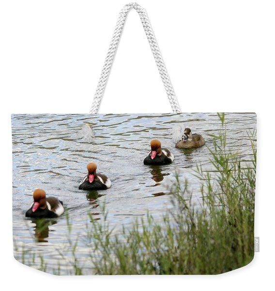 Red-crested Pochard -netta Weekender Tote Bag
