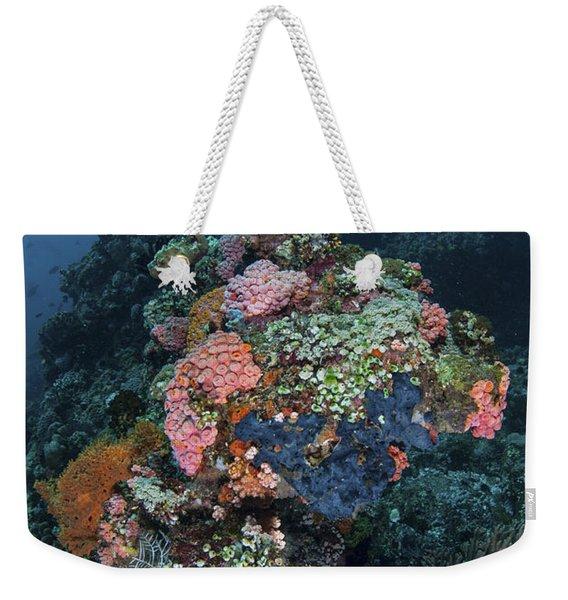 A Manta Ray Swimming Above A Colorful Weekender Tote Bag