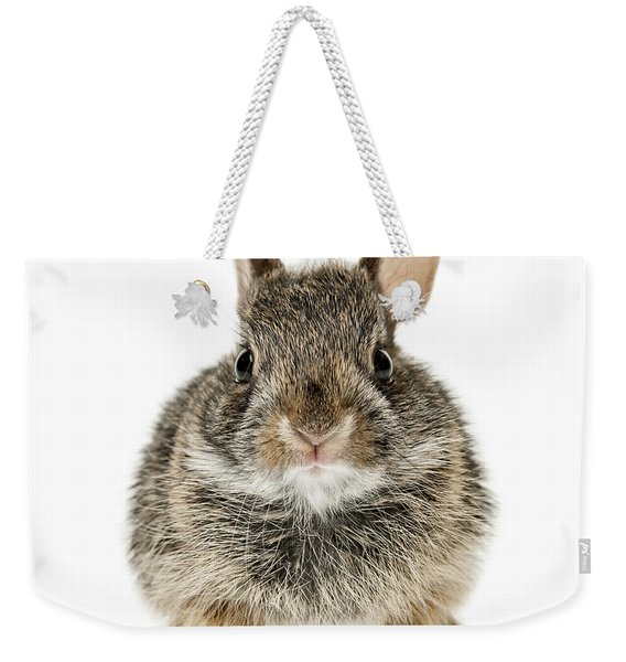 Baby Cottontail Bunny Rabbit Weekender Tote Bag