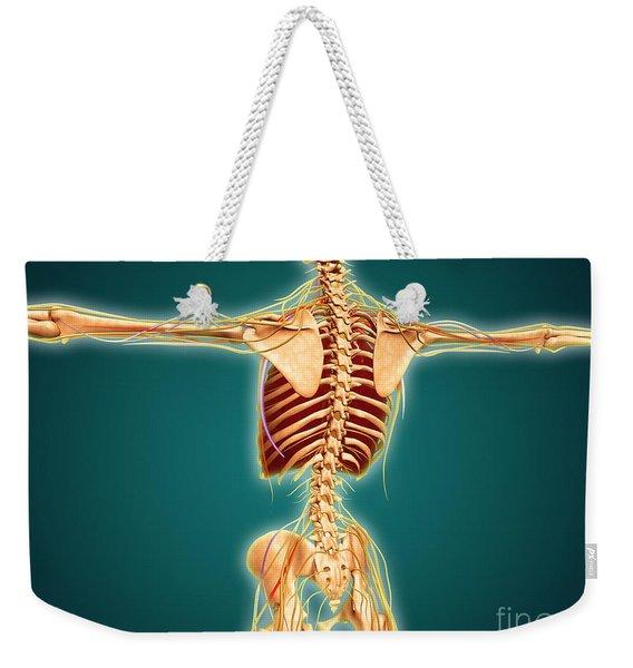 Back View Of Human Skeleton Weekender Tote Bag