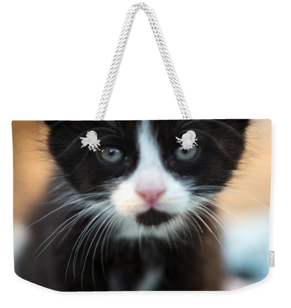 Black And White Kitten Weekender Tote Bag