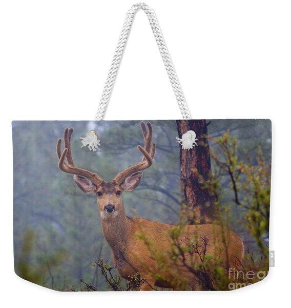 Buck Deer In A Mystical Foggy Forest Scene Weekender Tote Bag