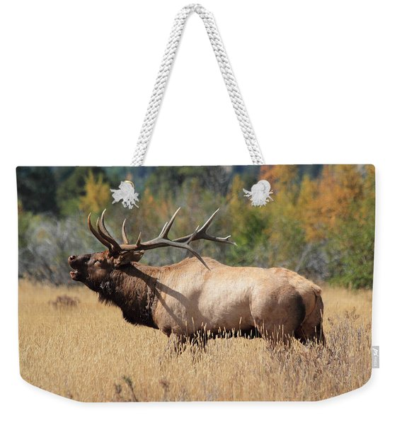 Bugling Bull Weekender Tote Bag