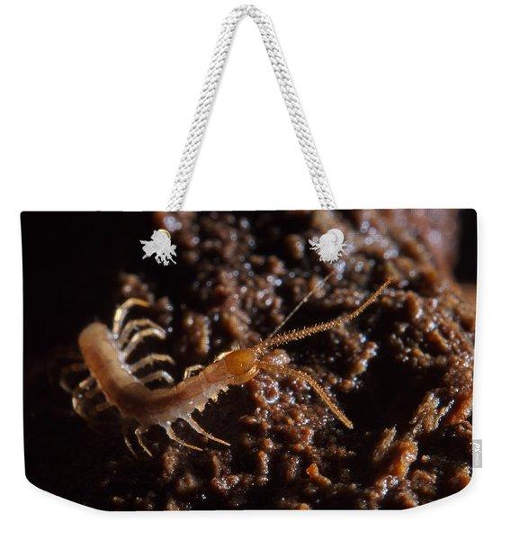 Cave Centipede Weekender Tote Bag