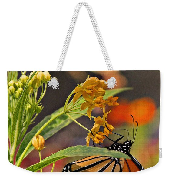 Clinging Butterfly Weekender Tote Bag