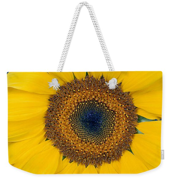Close-up Of A Sunflower Helianthus Weekender Tote Bag