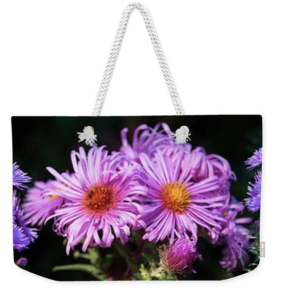 Close-up Of Daisy Flowers In Bloom Weekender Tote Bag