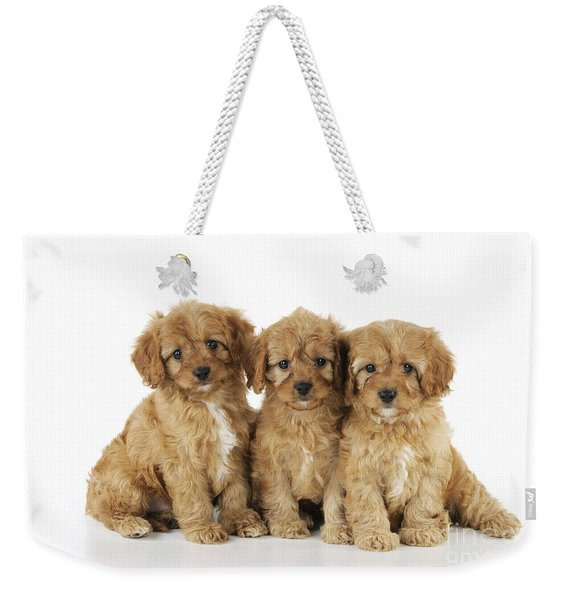Cockapoo Puppy Dogs Weekender Tote Bag