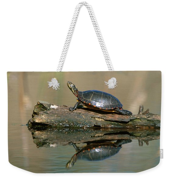 Eastern Painted Turtle Weekender Tote Bag