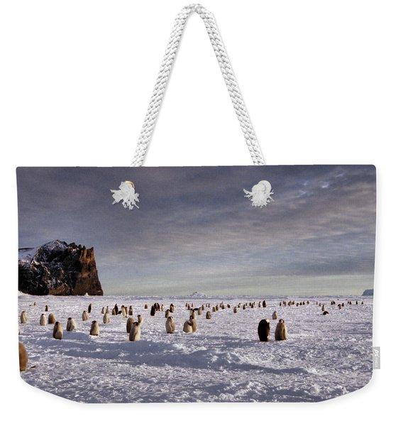 Emperor Penguin Colony Cape Washington Antarctica Weekender Tote Bag