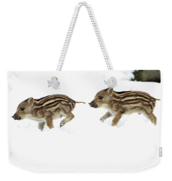 European Wild Piglets Weekender Tote Bag