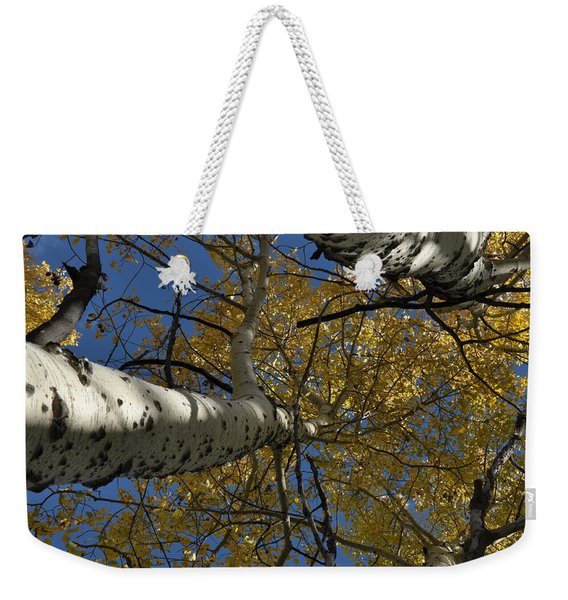 Fall Aspen Weekender Tote Bag