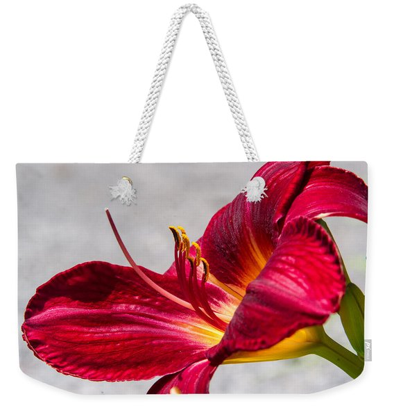 Flaming Red Lily And Reproductive Structures 2 Weekender Tote Bag