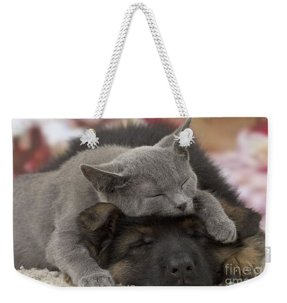 German Shepherd And Chartreux Kitten Weekender Tote Bag