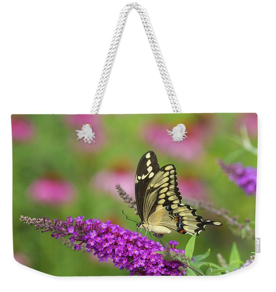 Giant Swallowtail Butterfly Papilio Weekender Tote Bag