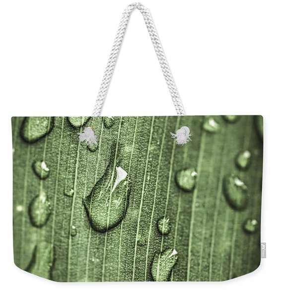 Green Leaf Abstract With Raindrops Weekender Tote Bag