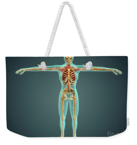 Human Body Showing Skeletal System Weekender Tote Bag