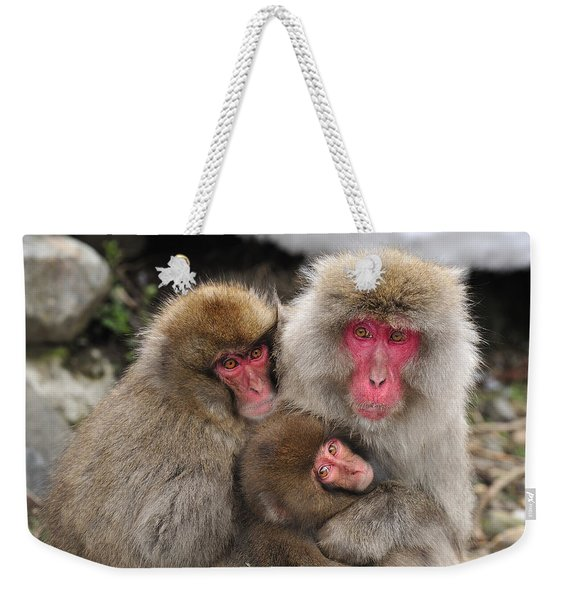 Japanese Macaque Mother With Young Weekender Tote Bag