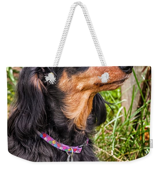 Weekender Tote Bag featuring the photograph Katie by Jim Thompson