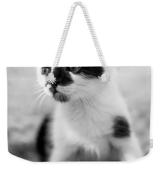 Kitten Dreaming Weekender Tote Bag