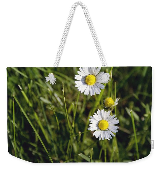 Little White Daisies Weekender Tote Bag